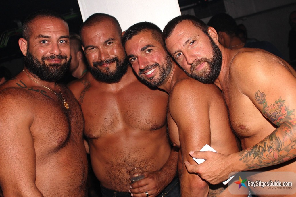Медведи гей фото