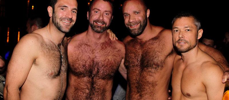 from Kase gay bear faq